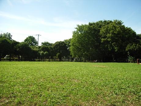 RIMG1397